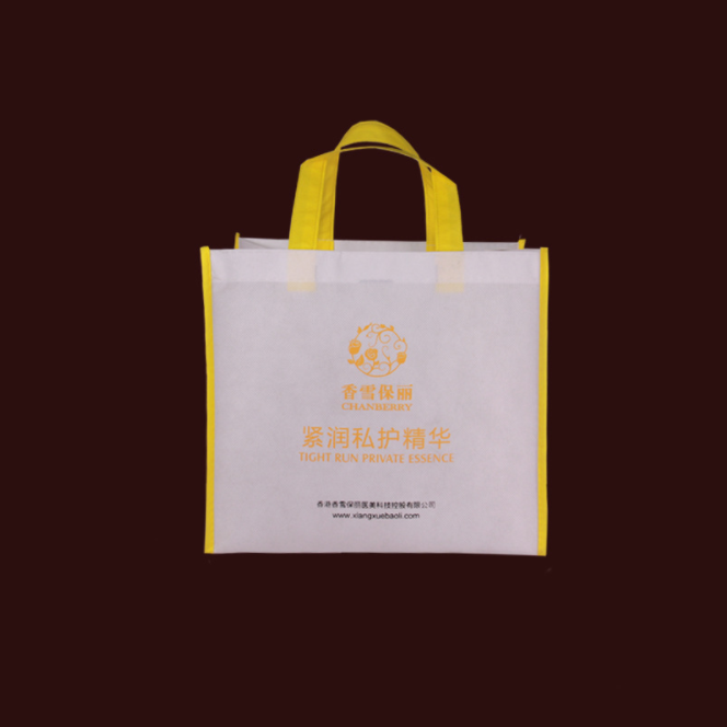 Shopping Carry Fabric Laminated Recyclable PP Non Woven Shopping Bag