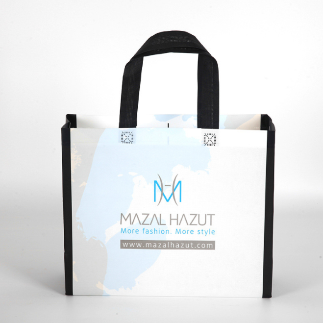 Wholesale Custom Foldable Shopping Recycle PP Non Woven Bag