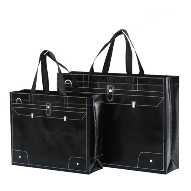 Printed Tote Bag Foldable Reusable Shopping Folding Non Woven Bag With Handle Featured Image